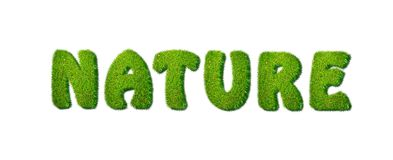 Nature. Royalty Free Stock Images