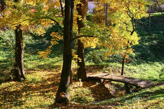 Nature 6. Shot of beautiful nature-forest with many colors in autumn and old shed Royalty Free Stock Photos