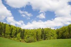 nature Image libre de droits