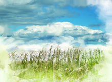 Nature abstract background Stock Images