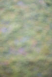 Nature abstract background, blur picture Royalty Free Stock Photos