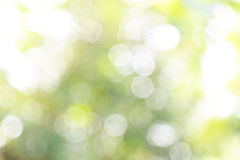 Nature abstract bokeh background. Shiny and bright Royalty Free Stock Image
