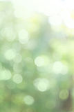 Nature abstract bokeh background Royalty Free Stock Photo