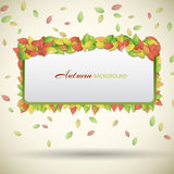 Nature abstract eco banner Stock Photos