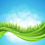 Nature ackground. Abstract backdrop with green gra. Ss wave. Bokeh design Royalty Free Stock Photo