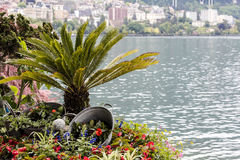 Nature adorn the promenade in Montreux Stock Image