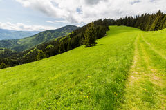 Nature along the cycling way from Malino Brdo to Revuce in Slova. View of nature Landscape along the cycling way from Malino Brdo to Revuce, Slovakia 2015 Royalty Free Stock Photography