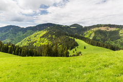 Nature along the cycling way from Malino Brdo to Revuce in Slova. View of nature Landscape along the cycling way from Malino Brdo to Revuce, Slovakia 2015 Stock Image