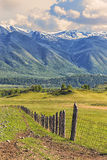 Nature of Altai. A fence on a green slope. Royalty Free Stock Images