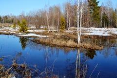 Nature Altaya pleases eye Stock Photo