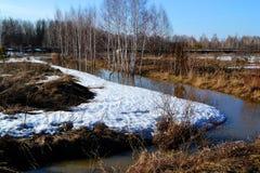 Nature Altaya pleases eye Stock Photos