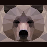 Nature and animals life theme background. Wild brown bear stares forward. Nature and animals life theme background. Abstract geometric polygonal triangle Stock Photos