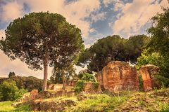 Nature and archaeological excavations of the Port of Trajan. Rome - Italy Stock Photography