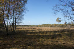 Nature area gilderhauser venn Stock Images