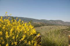 The Meron mountains in the Galilee royalty free stock images