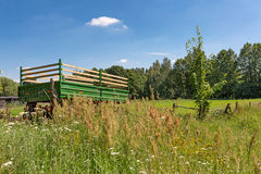 Nature around Strausberg nearby Berlin. On a beautiful sunny day Stock Photography