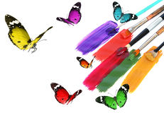 Nature and art abstract with copy space. Acrylic paints with art brushes and colorful beautiful butterflies. Nature inspiration. Nature and art abstract with Royalty Free Stock Photos