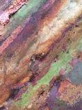 Nature& x27; arte de s fotografía de archivo libre de regalías