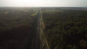 Nature au coucher du soleil Vue de la for?t verte images libres de droits