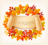 Nature Autumn Background With Colorful Leaves Photographie stock