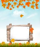 Nature autumn background with a colorful leaves royalty free illustration