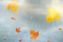 Nature autumn background with falling red, yellow, orange, brown Maple Leaves on sky. Autumn season rainy weather design. Template for placards, banners royalty free illustration