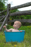 Nature Baby. Image of a cute baby sitting in a tub in a meadow, holding a dandelion Stock Photos