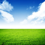 Nature Background. Beautiful scene of Nature .Perfect meadow stock image