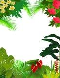 Nature background. Illustration of beautiful nature backgound Stock Image