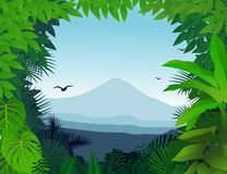 Nature background Royalty Free Stock Photos