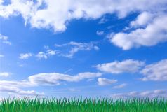Nature Background 2 Stock Photography