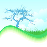 Nature background. Abstract nature background design vector illustration