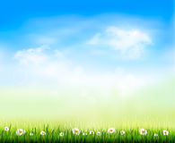 Nature background. Nature grass background. Vector illustration Royalty Free Stock Photo