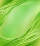Nature background Stock Photography