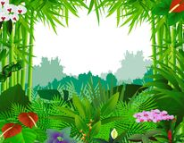 Nature background with bamboo tree. Illustration of nature background with bamboo tree Stock Photography