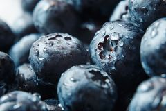 Nature background. Big beautiful water drops on ripe and juicy fresh picked blueberries closeup. Macro view of abstract nature tex stock photography