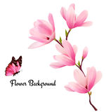 Nature background with blossom branch of pink flowers and butter Royalty Free Stock Image