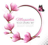 Nature background with blossom branch of pink flowers Stock Images