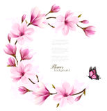 Nature background with blossom branch of pink flowers. Royalty Free Stock Photography
