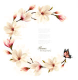 Nature background with blossom branch of white magnolia Royalty Free Stock Photo