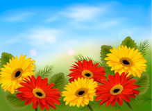 Nature background with colorful beautiful flowers. And blue sky. Vector illustration Stock Images
