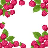 Nature background design with raspberries. Nature background design with stylized fresh raspberries stock illustration