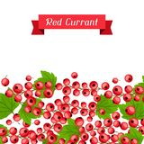 Nature background design with red currants. Stock Photos