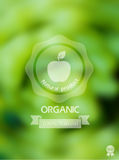 Nature background with eco label of Organic Standart Food. Royalty Free Stock Photo