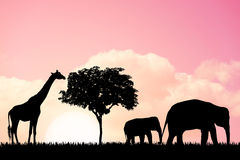 Nature background with elephants and giraffe Stock Photo