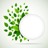 Nature background with fresh green leaves Stock Image