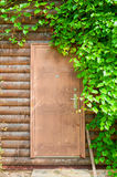 Nature background of grape leaves framing the wooden brown door. Stock Photos