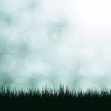 Nature background with grass and bokeh lights. Stock Images