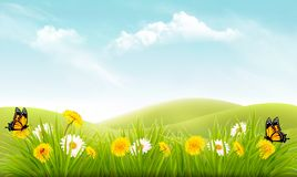 Nature background with grass and flowers and butterflies. Vector Stock Photos