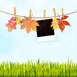 Nature background with grass, photos on rope and autumn leaves v Royalty Free Stock Image